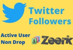 I will provide you 8000+ Twitter Followers (organic, Real, Non-drop)