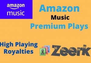 I will provide 9000 Amazon Music Unlimited Plays ( HIGH PLAYING ROYALTIES )
