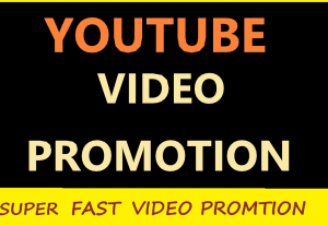 I will do promote your YouTube video on 1500 video views and 100 video likes