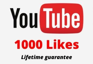 1000 Youtube Likes in your youtube video 100% Guaranteed