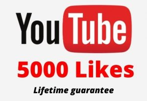 5000 Youtube Likes in your youtube video 100% Guaranteed