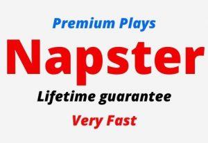 Add 100 Napster Premium Plays, Lifetime guarantee.