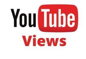Give You 2000+ Organic YouTube Video Views