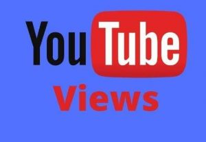 Give You 17000+ Organic YouTube Video Views