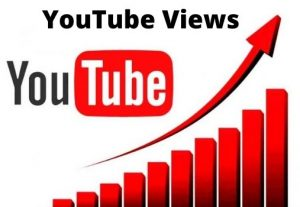 I will promote your video 2000+ YouTube Views ( Non-drop)