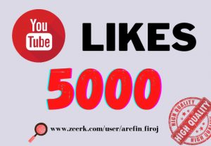I will provide 5k real likes in your YouTube video