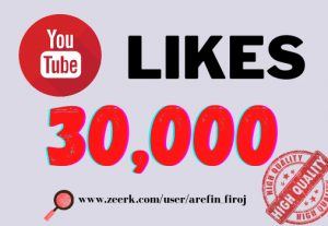 I will provide 30k real likes in your YouTube video