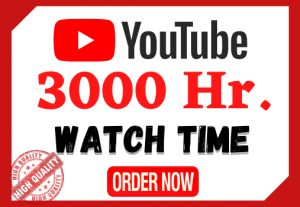I will provide 3,000 hours watch time in your YouTube videos