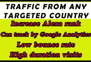 I will drive real, organic traffic from targeted countries