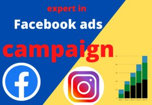 I will be your Facebook manager for run ads campaign