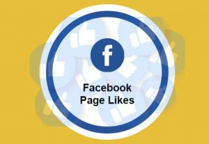 I will Provide You Fast 500+ Facebook Page Likes None Drop