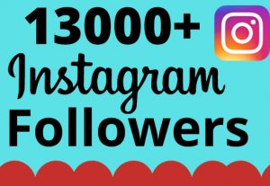 I will add 13000+ real and organic Instagram followers for your business