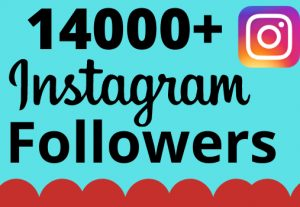 I will add 14000+ real and organic Instagram followers for your business