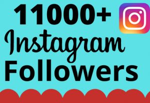 I will add 11000+ real and organic Instagram followers for your business