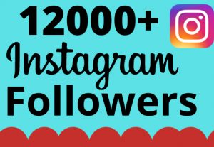 I will add 12000+ real and organic Instagram followers for your business