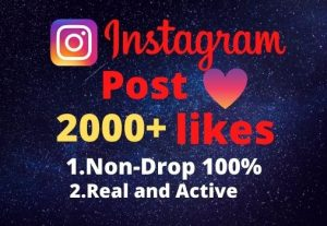 I will provide you 2000+real/organic Instagram posts like