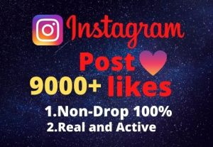 I will provide you 9000+real/organic Instagram posts like