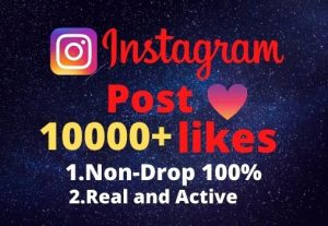 I will provide you 10000+real/organic Instagram posts like