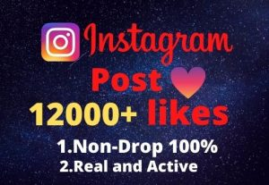 I will provide you 12000+real/organic Instagram posts like
