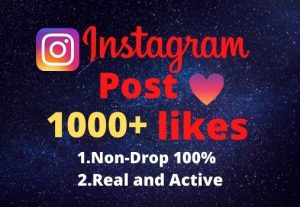 I will provide you1000+real/organic Instagram posts like.