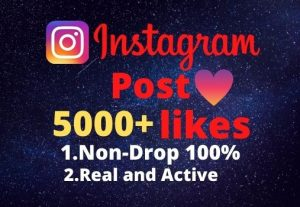 I will provide you 5000+real/organic Instagram posts like