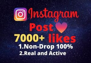 I will provide you 7000+real/organic Instagram posts like