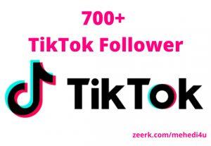 I will provide 700+ real TikTok Followers || 100% original