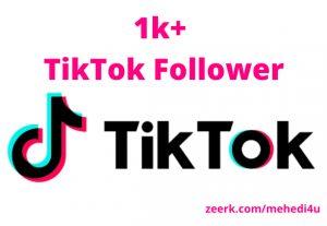 I will provide 1k+ real TikTok Followers || 100% original