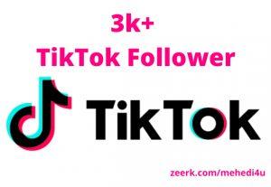 I will provide 3k+ real TikTok Followers || 100% original