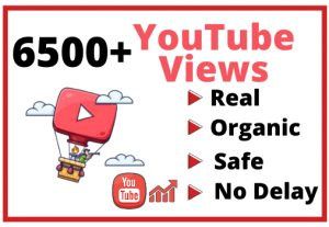 Get 6500+ Real and Organic YouTube views