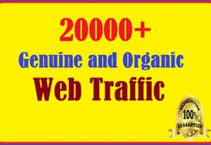 get 20000 web visitors real targeted Organic web traffic from World Wide