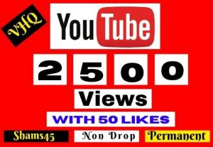 I will Promote Your video 2500+ YOUTUBE VIEWS with 50 Like NON DROP, Lifetime guaranteed