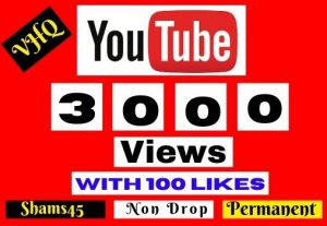3000+ YOUTUBE VIEWS with 100 Like I will Promote Your video, NON DROP, Lifetime guaranteed