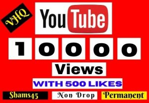 10000+ YOUTUBE VIEWS, I will Promote Your video, NON DROP, Lifetime guaranteed