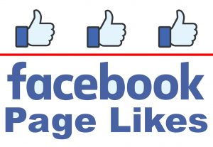 Add 3000+ Real Facebook Page Likes