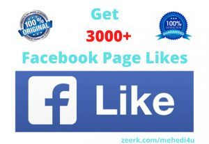 I will give 3k+ real Facebook Page Likes || 100% original || Permanent