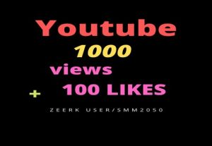 1000+ YouTube Views, & 100+ Likes, Real Active Users, Non-Drop /  Lifetime Refill Guaranteed