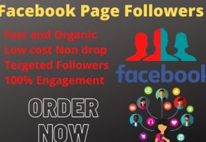 You will get 1000+ non drop active followers or Likes for your business page