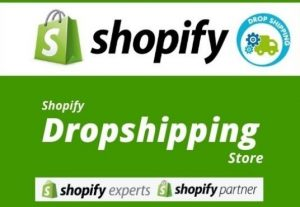Shopify Dropshipping Store Creation With Winning Products
