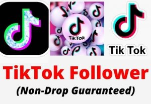 I will Drive 2000 Real TikTok Followers with a Money-back guarantee.