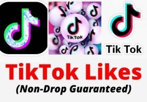 I will Drive 1000 Real TikTok Likes with a Money-back guarantee.