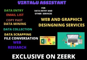 I will be your professional virtual assistant for data entry services