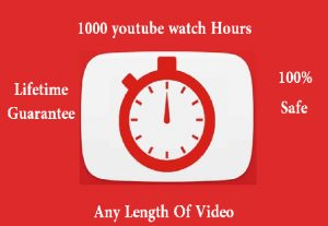 i will give you 1000 youtube real Watchtime Lifetime Guarantee
