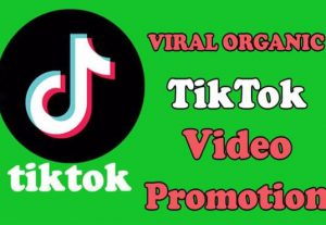 I will do tik tok shoutout and music song video promotion