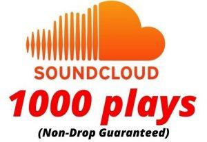 Provide 1000 SoundCloud Plays Non-Drop Lifetime Guaranteed.
