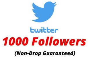 Provide 1000 Real Twitter Followers Non-drop Lifetime Guaranteed.