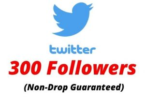 Provide 300 Real Twitter Followers Non-drop Lifetime Guaranteed.