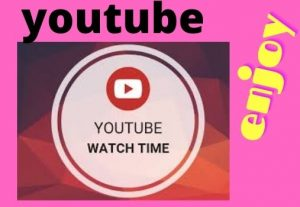I will provide 1,000 youtube Watchtime