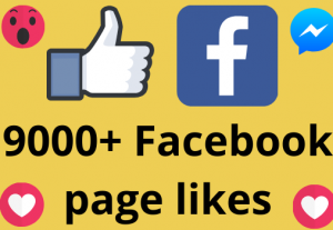 I will add 9000+ REAL AND non drop Facebook Page likes