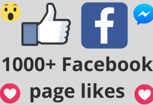 I will add 1000+ REAL AND non drop Facebook Page likes